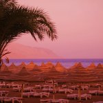 Beach by sunset Tiran Island as background