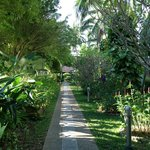 Patong Resort Hotel viale ala nuova