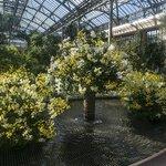 Longwood Gardens arboretum