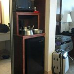 Good size mini fridge and bonus microwave