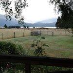 View from Blue Cottage Verandah