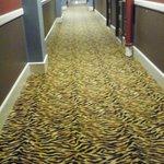 even the hallways were cool