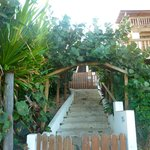 lush covered walkway to the beach