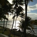 Photo of Caribe Playa Beach Hotel