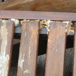 Mould on outdoor furniture 2