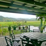 Unwind at the Daintree Riverview