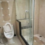 Toilet with shower stall