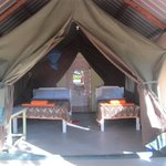 Our tented rooms