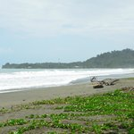 The Beach 100 yeards away