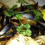 Diablo Mussels