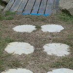 Seashell stepping stones LOVE !