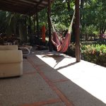 hammocks outside the hostel