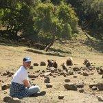 20 minuti dall'hotel la comunità dei babbuini