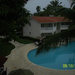 Royal Suite pool, mango tree,