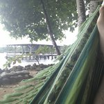 Hammocks: next to the ocean. And see that platform in the water?  It has a *le