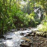 Calido sol y un rio sin igual.!