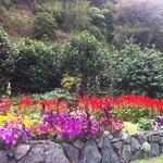 Lower Flower Garden