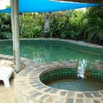 Cool shaded Pool and Spa