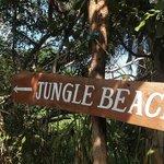 Weg zum Jungle Beach