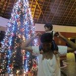 Christmas tree in lobby