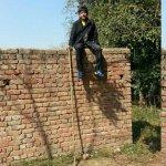 hurdle wall