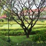/home/rob/Afbeeldingen/kerst 2012 en thailand 2013/100_4468.JPG