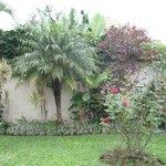 Casa Isabella - beautiful garden