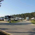 Pull through sites at Pecan Park