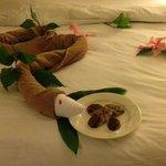 kaneisha's towel creations