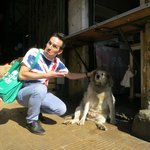 boris and dog buddha