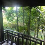 Overgrown dismal balcony view from villa room.