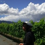 Biking to one of the 25 nearby wineries