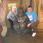 the gorilla in side