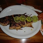 whole snapper