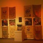 Coffee bag display of Tampa's famous coffee