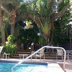 pool area again