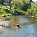 Waitangi River