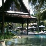 Tranquil pool and bar area