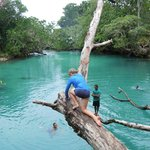 Blue Lagoon and tree jump trip