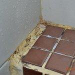 Mould shower
