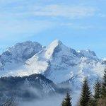 Vom Langlaufgelände Blick auf die Alpspitze