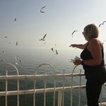 My wife feeding the seagulls