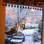 Snowy 50th at The Cranleigh