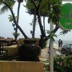 Entrance of Coco 51
