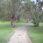 Road leading out of the grounds