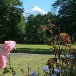 Blick vom Garten auf den Villarica
