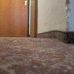 Der gepflegte Teppichboden, die Wände