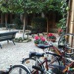 El patio con las bicis