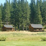 Private individual cabins amongst the pines
