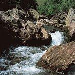 Secrets in the Gwaun Valley